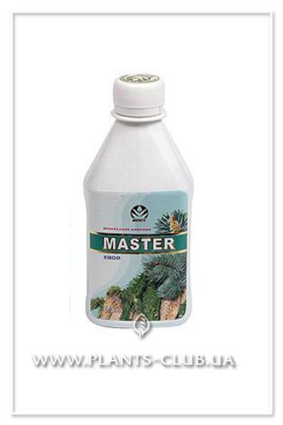 p-29769-rost-master-khvoya.jpg