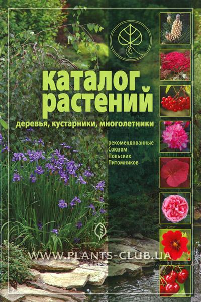p-30084-katalog-dekorativnikh-roslin35.jpg