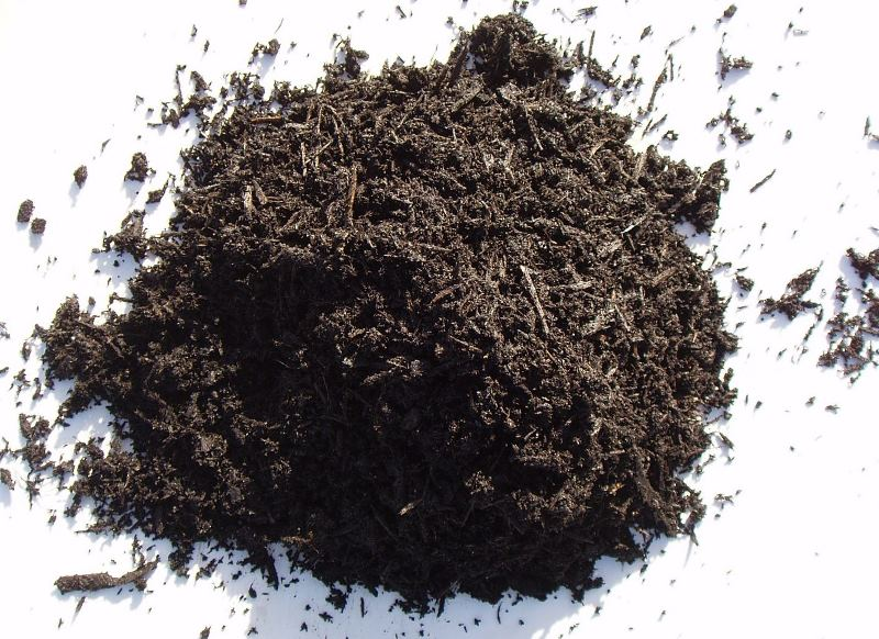гумус, активные добавки, навоз, почва, земля, грунт, уход, сад, растения, своеты