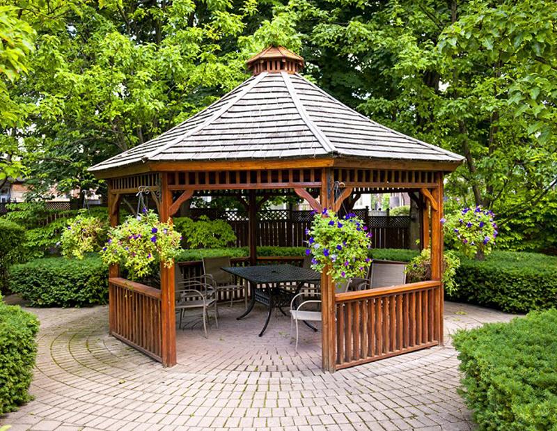 альтанка, беседка, реставрация, сад, растения, уход, догляд, рослини, декор