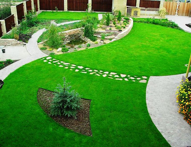 газон, трава, поливання, підживлення, уход, сад, растения