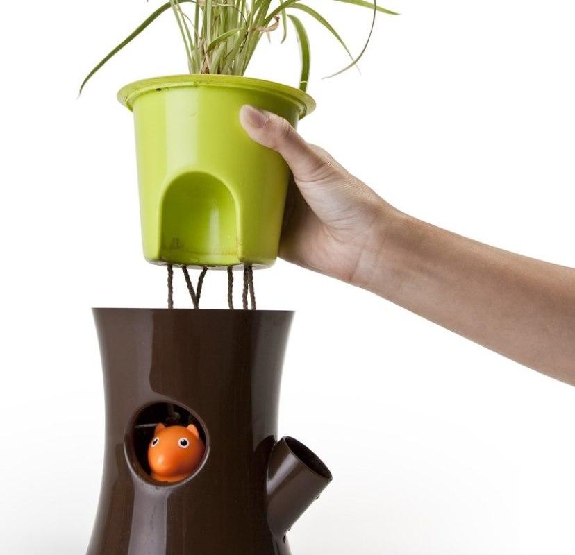 горшок, вазон, растения уход, дім, рослини, догляд