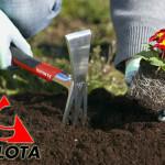 kultivatory-bellota