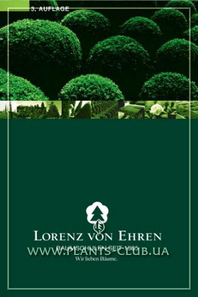 p-30040-lorenz-von-ehren.jpg