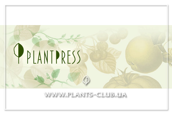 p-30060-plantpress.jpg