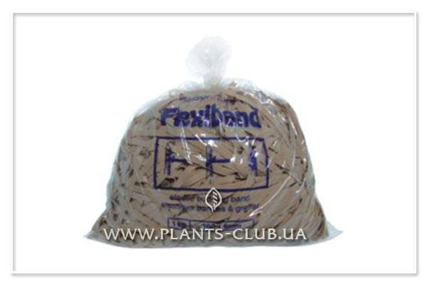 p-34907-flexiband-lvov7.jpg