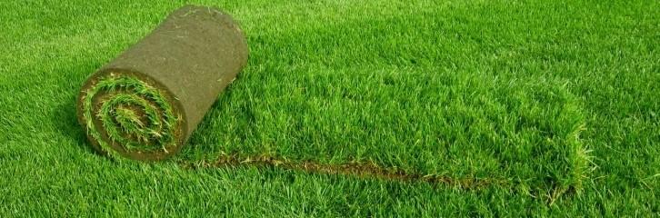 рулон, трава, сад, уход, растения,рулон, трава, сад, уход, растения,