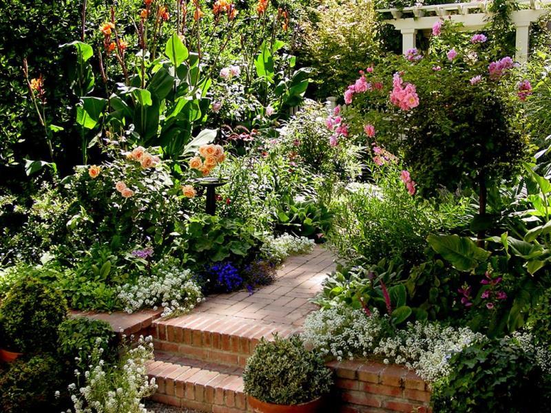 май, огород, сад, растения, садовники, советы, чем занятся, уход,