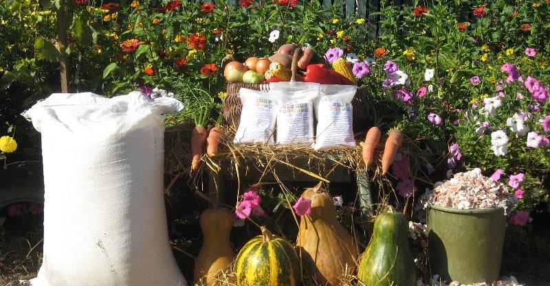 осень, зима, растения, цветы, сад, уход, советы, компост, подпитка, биодобавки, гумус, перегной, удобрения