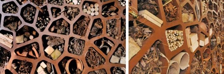 отель, насекомые, растения, цветы, защита, рослинии, комахи, запилення, захист