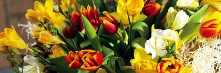 букет. почта, заказ, цветы, растения, квіти, пошта, замовлення,