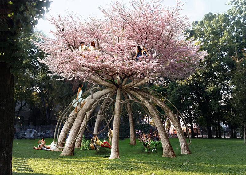 декор, сад, уход, поради, советы, цветы