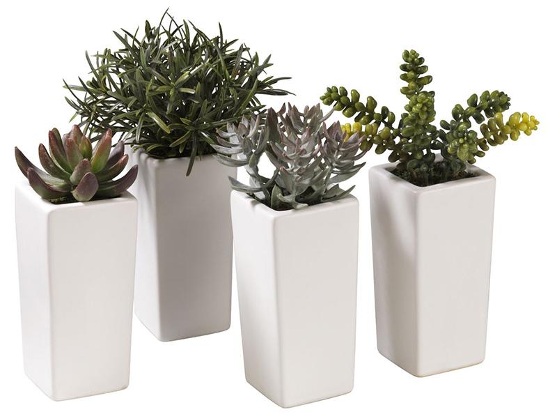 горшки,в азон, балкон, сод, растения, дизайн, уход, квіти, догляд, поради, стиль