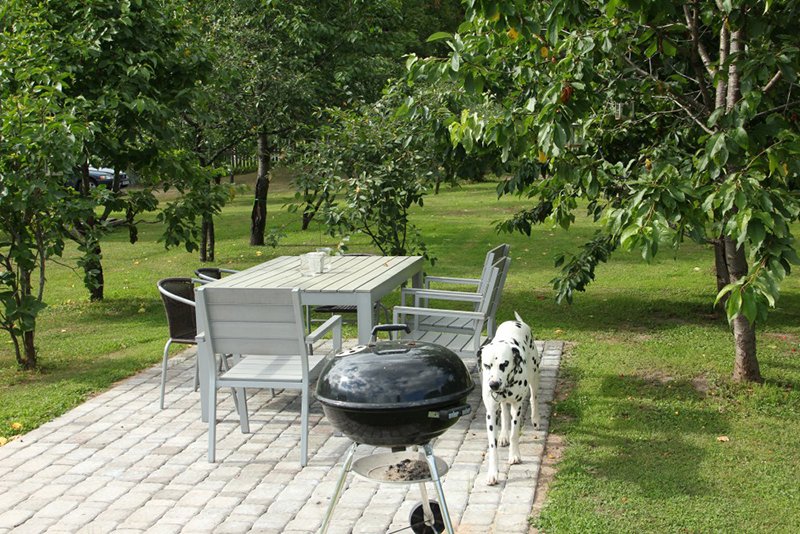 гриль, барбекю, сад, уход, развлечения