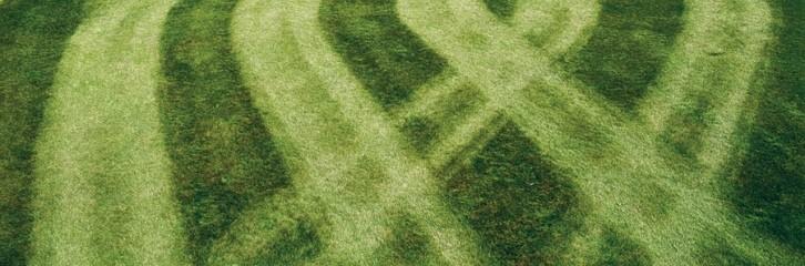 смуги, газон, трава, догляд, сад, уход, советы, полосы
