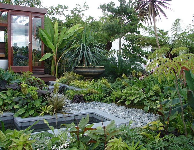 сад, крыша, дах, растения, уход, поради, квіти