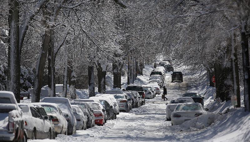 cоль, дороги, снег, растения, догляд, рослини, сіль, пісок