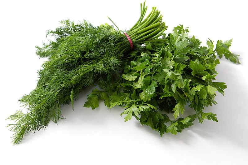 трави, уход, специи, горшки, сад, растения, цветы, базилик, мята
