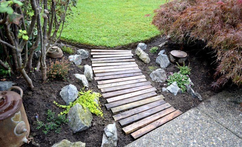 алея, сад, огород, растения, цветы, уход, советы
