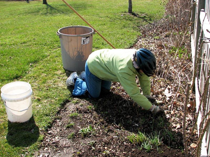 сад, уход, апрель, советы, растения, поливание, декорирование