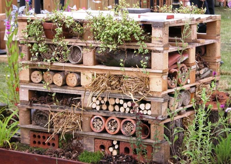 оводы, насекомые, проживание, сад, огород, уход, растения, почва, отели, домики, условия для насекомых