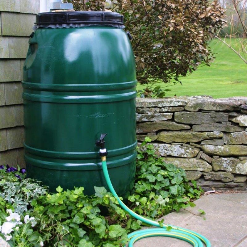дождевая вода, сбор, поливание, сад, советы, уход, правила, растения, технологии