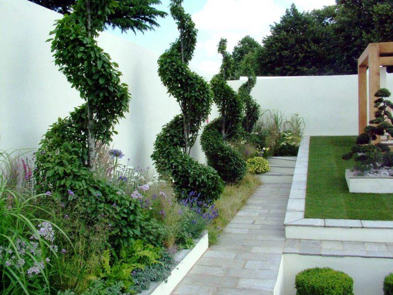 сад, цвет, яркость, краски, дизайн, декор, акцент, солнце,