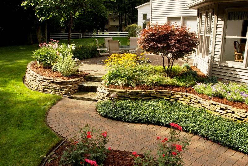 мульчування, догляд, декор, дизайн, сад, рослини, методи, правила